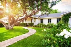 iStock 639414496 300x200 Adding Value to Your Property with Landscaping