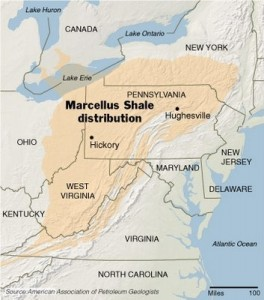 Marcellus Shale 264x300 Pennsylvania Bluestone Flagstone   Quality & Availability
