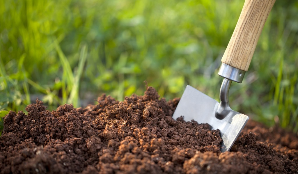 landscaping soil e1555512308594 1024x598 Dishing the Dirt about Dirt: What You Need to Know About Landscaping Soil